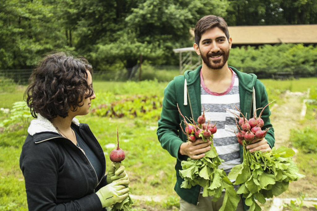 Camp Counsellors tending the vegetable garden at Camp Ballibay Performing Arts Camp in Pennsylvania, USA