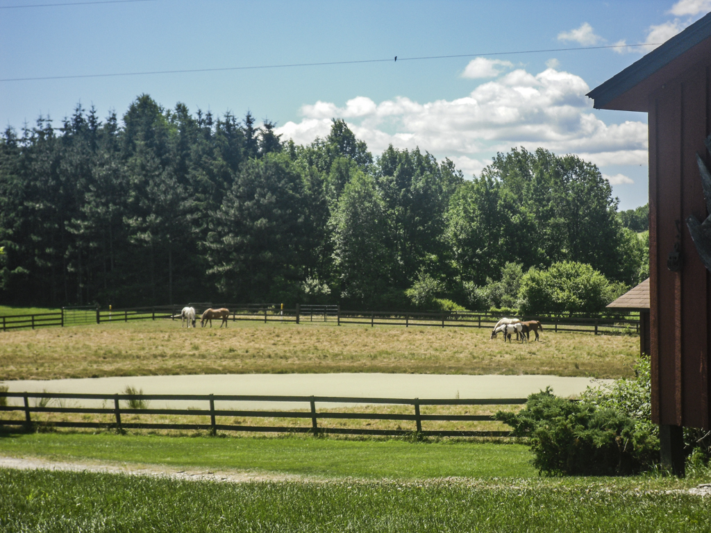Horse stables at Camp Ballibay Performing Arts Camp in Pennsylvania, USA