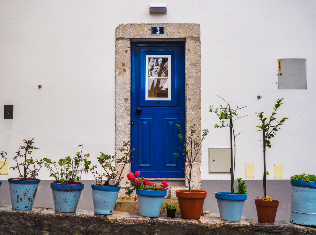 Blue door with plant pots in Lisbon, Portugal | 3 days in Lisbon Itinerary