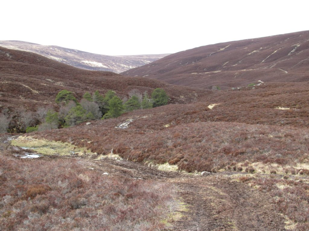 Glen Feshie in the Cairngorms National Park, Scotland Mary Queen of Scots Filming Locations